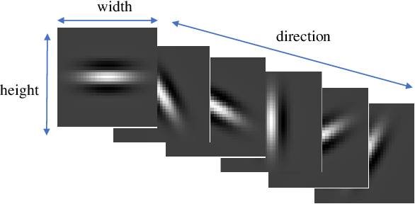 Figure 1 for Touchless Palmprint Recognition based on 3D Gabor Template and Block Feature Refinement