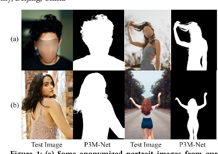 Figure 1 for Privacy-Preserving Portrait Matting