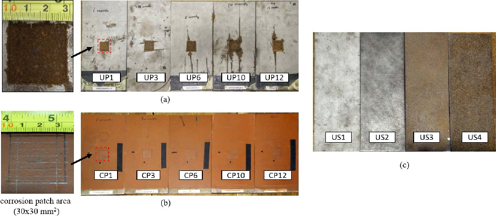 Fig. 2. Corrosion sample sets: (a) uncoated corrosion progression (UP), (b) coated corrosion progression (CP), and (c) uncoated surface preparation (US).