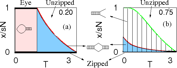 Complete Phase Diagram Of Dna Unzipping Eye Y Fork And Triple