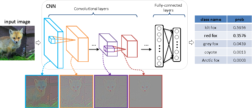 Figure 1 for Visualizing and Comparing Convolutional Neural Networks