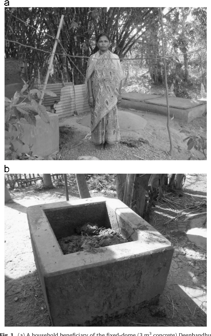 The implementation of decentralised biogas plants in Assam