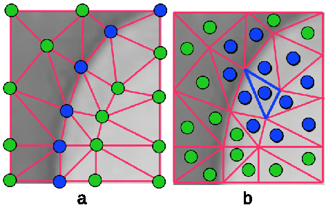 Figure 1 for Adaptive Mesh Representation and Restoration of Biomedical Images
