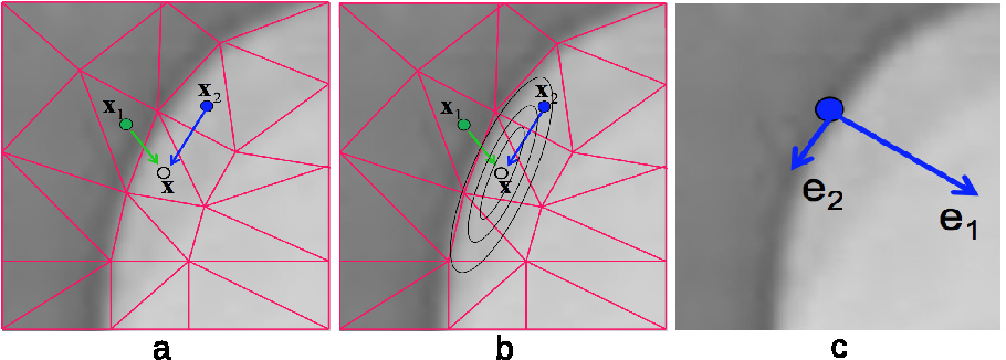 Figure 3 for Adaptive Mesh Representation and Restoration of Biomedical Images