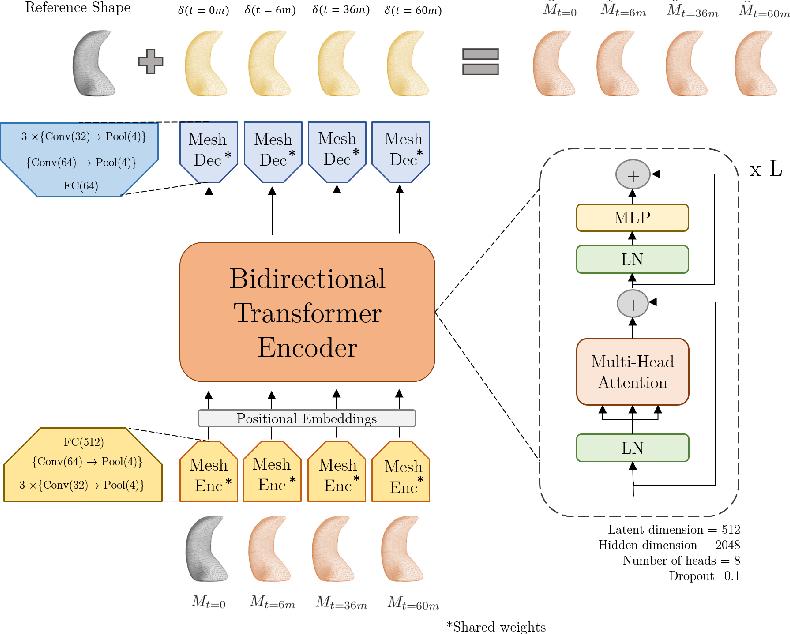 Figure 1 for TransforMesh: A Transformer Network for Longitudinal modeling of Anatomical Meshes