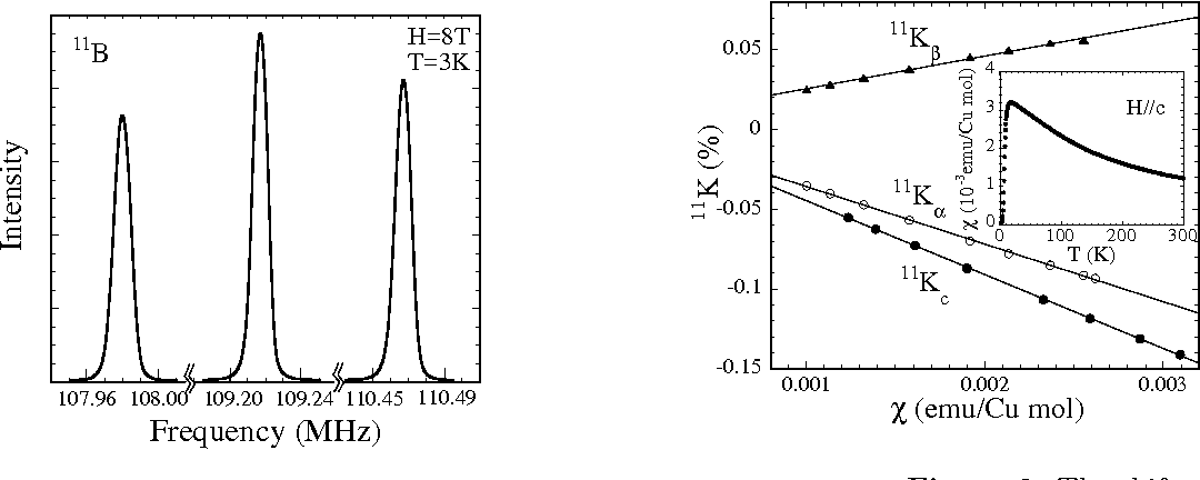 Figure 3. The shifts at B sites are plotted against the susceptibility. The solid lines show fitting to linear relation.