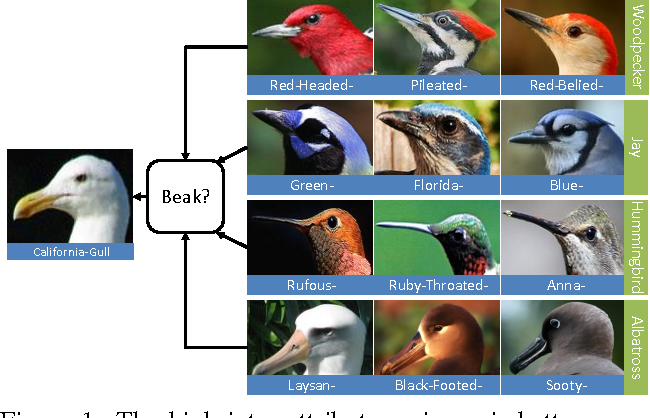 Figure 1 for How to Transfer? Zero-Shot Object Recognition via Hierarchical Transfer of Semantic Attributes