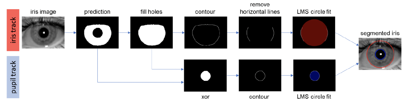 Figure 2 for Semantic Segmentation of Periocular Near-Infra-Red Eye Images Under Alcohol Effects