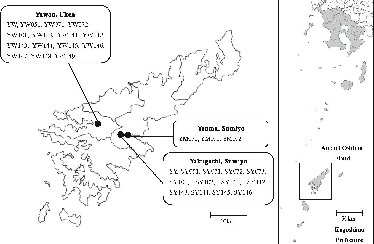 Population genetics analysis of East Asian Passiflora virus on Amami