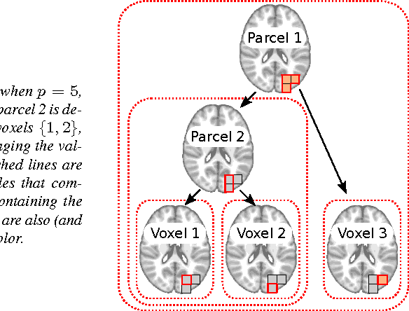 Figure 1 for Multi-scale Mining of fMRI data with Hierarchical Structured Sparsity