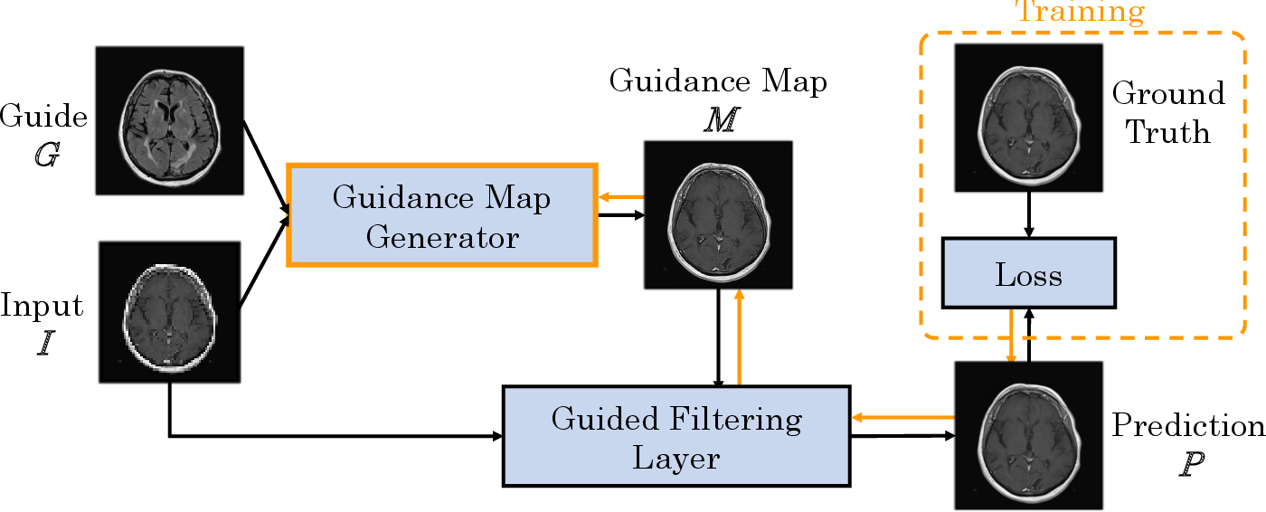 Figure 1 for Multi-modal Deep Guided Filtering for Comprehensible Medical Image Processing