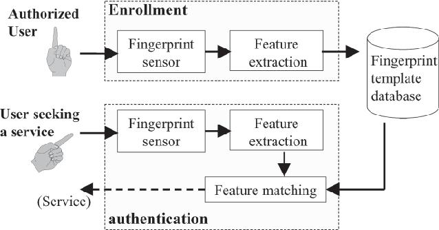 Detection and Recognition Technologies Fingerprint Identification ...
