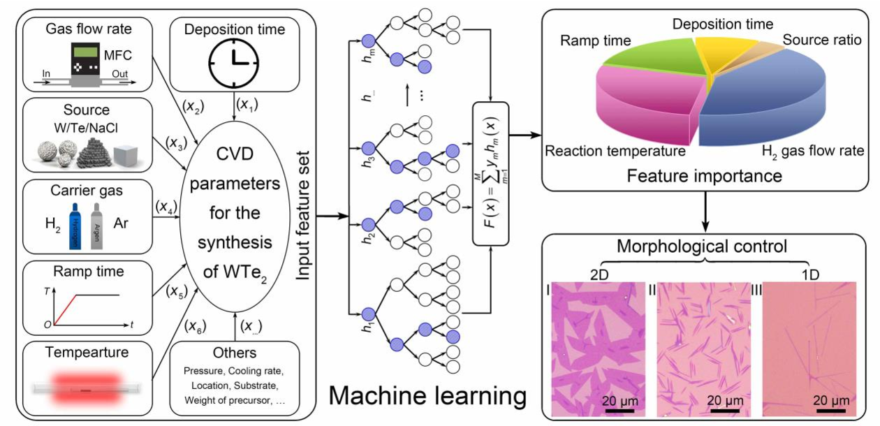 Figure 1 for Machine learning driven synthesis of few-layered WTe2