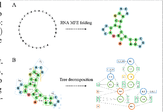 Figure 1 for Neural representation and generation for RNA secondary structures