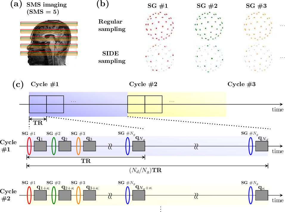 Figure 1 for Multifold Acceleration of Diffusion MRI via Slice-Interleaved Diffusion Encoding (SIDE)