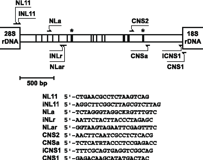 Figure 1 from a two locus dna sequence database for typing plant and figure 1 ccuart Gallery