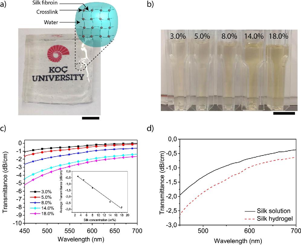Silk Hydrogel Lenses For Light Emitting Diodes Semantic Scholar Diode Diagram Figure 1
