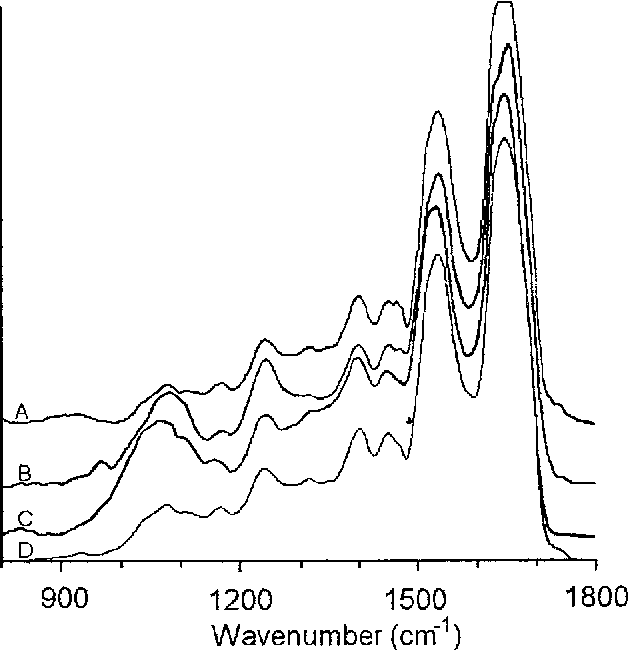 Figure 3 From Infrared Spectroscopy Of Human Tissue V Infrared