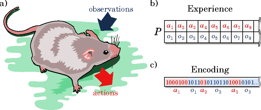Figure 1 for Memory shapes time perception and intertemporal choices