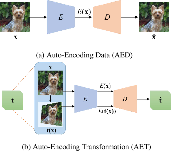 Figure 1 for AET vs. AED: Unsupervised Representation Learning by Auto-Encoding Transformations rather than Data