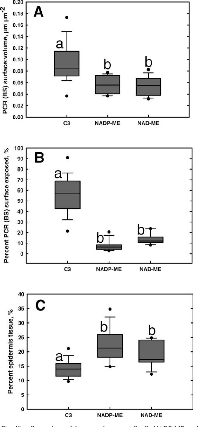 Diversity of Kranz anatomy and biochemistry in C4 eudicots ...