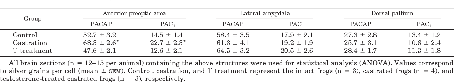 TABLE 1. Semiquantitative analyses of PACAP and PAC1 mRNA signals within some forebrain structures of the frog Xenopus laevis after castration and testosterone (T) treatment