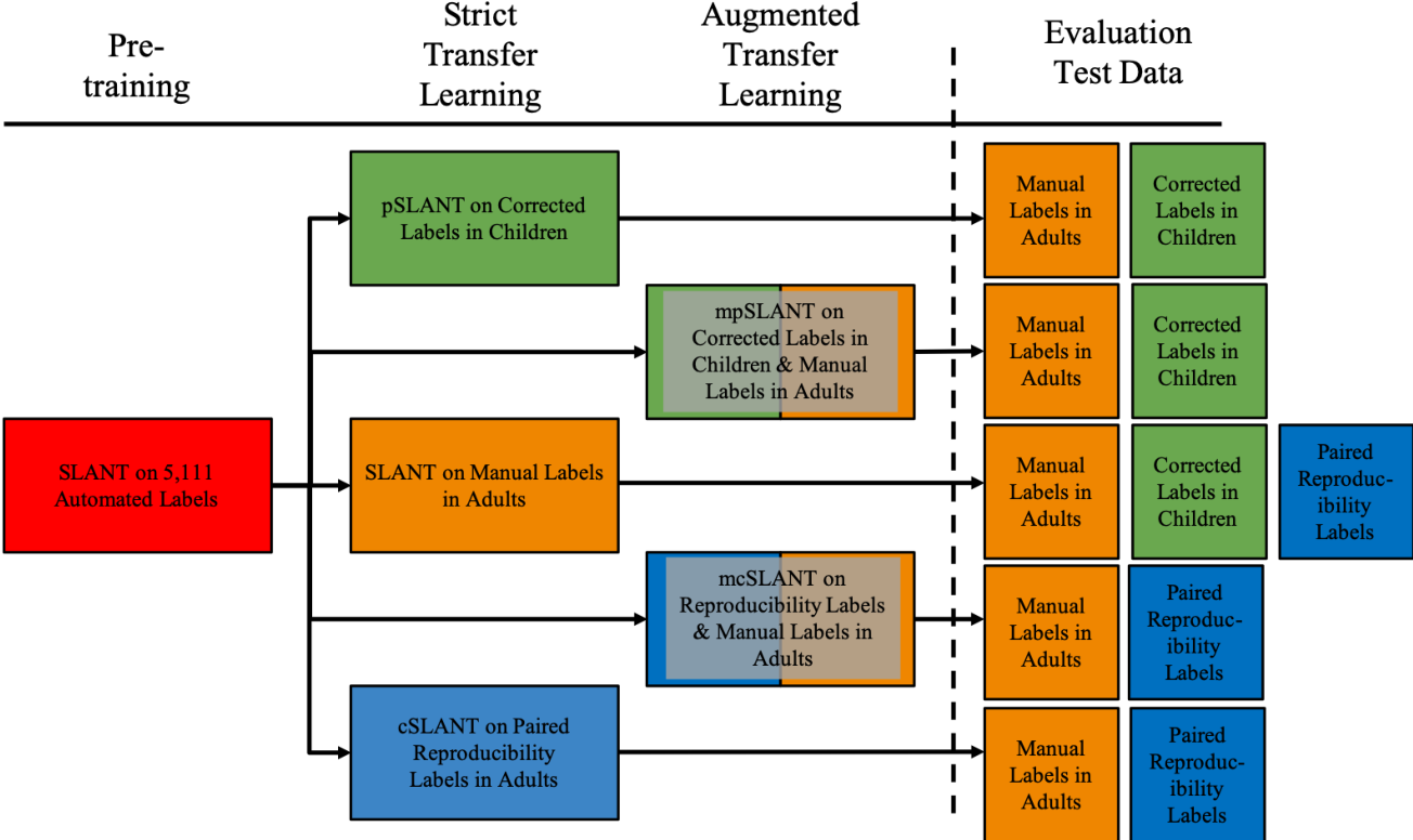 Figure 2 for Generalizing Deep Whole Brain Segmentation for Pediatric and Post-Contrast MRI with Augmented Transfer Learning