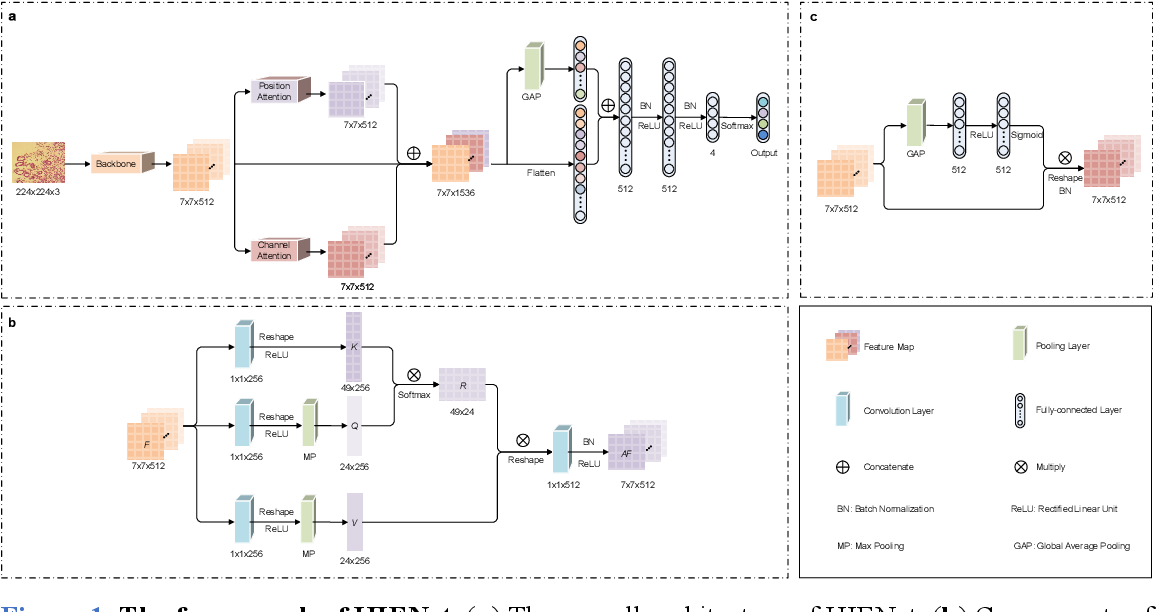 Figure 2 for Computer-aided diagnosis in histopathological images of the endometrium using a convolutional neural network and attention mechanisms
