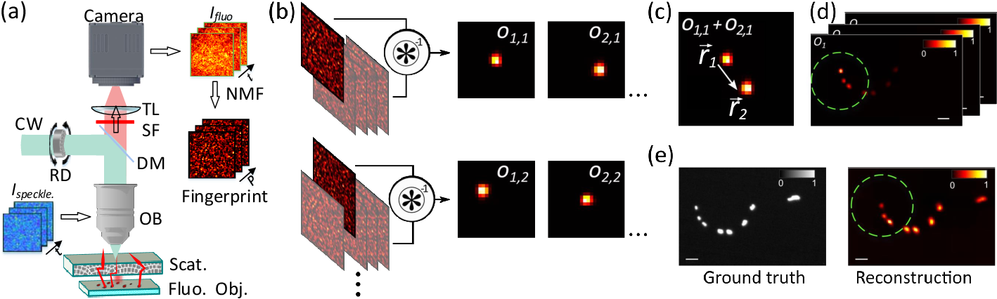 Figure 1 for Large field-of-view non-invasive imaging through scattering layers using fluctuating random illumination