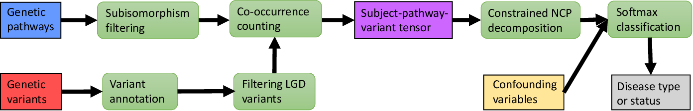 Figure 1 for PANTHER: Pathway Augmented Nonnegative Tensor factorization for HighER-order feature learning