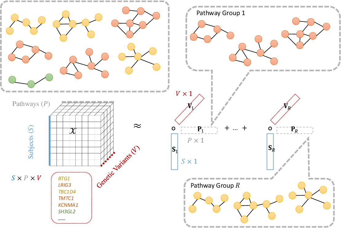 Figure 3 for PANTHER: Pathway Augmented Nonnegative Tensor factorization for HighER-order feature learning