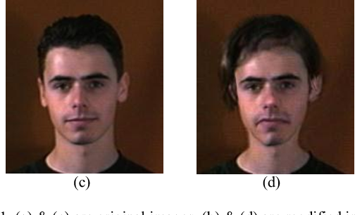 Figure 1 for Face Identification from Manipulated Facial Images using SIFT