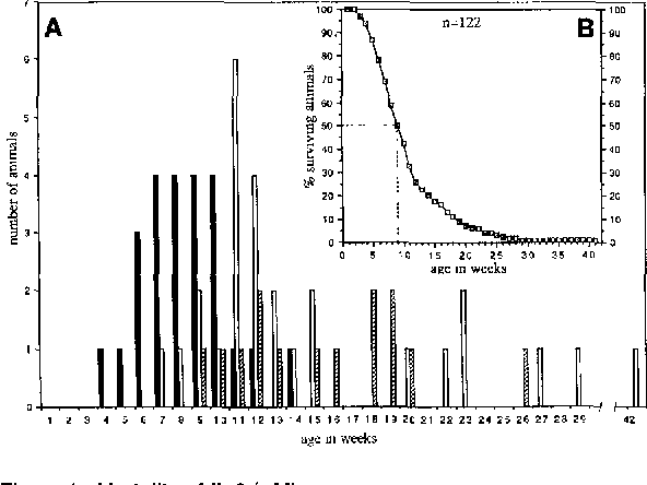 Figure 1. Mortality of IL-2 -~- Mice (A) IL-2 -~- mice (n = 41) were sacrificed when they became terminally ill, and the incidence of anemia (closed bars), colitis (open bars), or colitis accompanied by anemia (hatched bars) was scored at autopsy. (B) Regression line for IL-2 ~ animals that died or were sacrificed when moribund (n = 122).