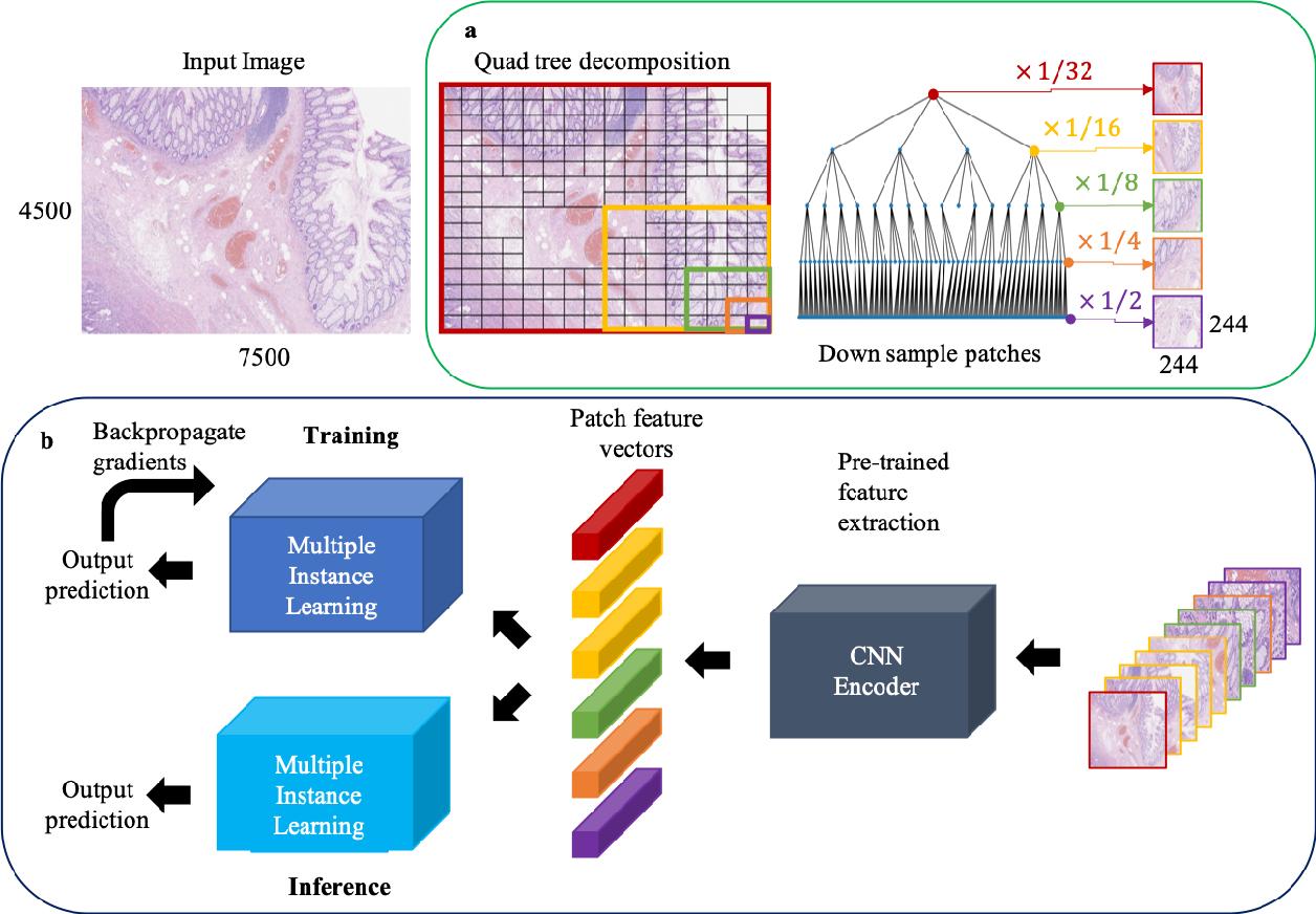 Figure 1 for A QuadTree Image Representation for Computational Pathology