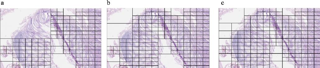 Figure 3 for A QuadTree Image Representation for Computational Pathology