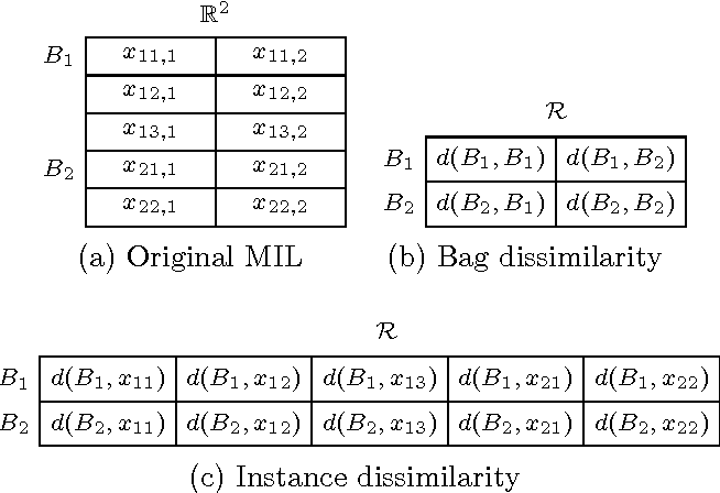Figure 1 for Multiple Instance Learning with Bag Dissimilarities