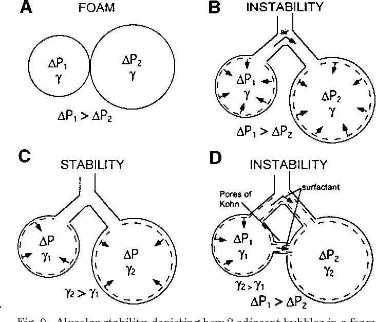Figure 9 From An Alternative View Of The Roles Of Surfactant And