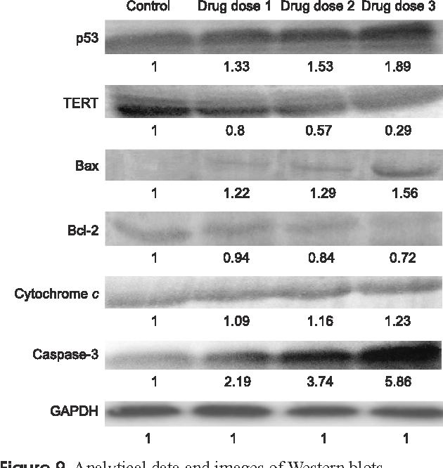 A homeopathic nosode, Hepatitis C 30 demonstrates anticancer