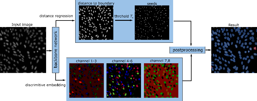 Figure 3 for Instance Segmentation of Biomedical Images with an Object-aware Embedding Learned with Local Constraints