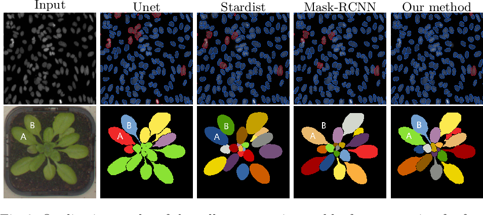 Figure 4 for Instance Segmentation of Biomedical Images with an Object-aware Embedding Learned with Local Constraints
