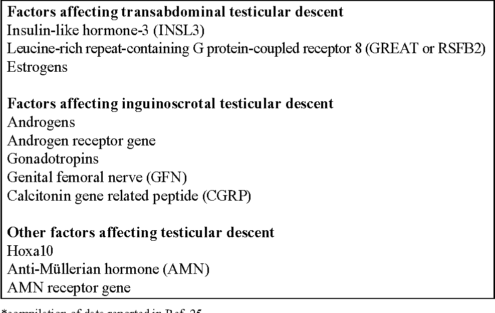 Table 1 From Cryptorchidism And Long Term Consequences Semantic