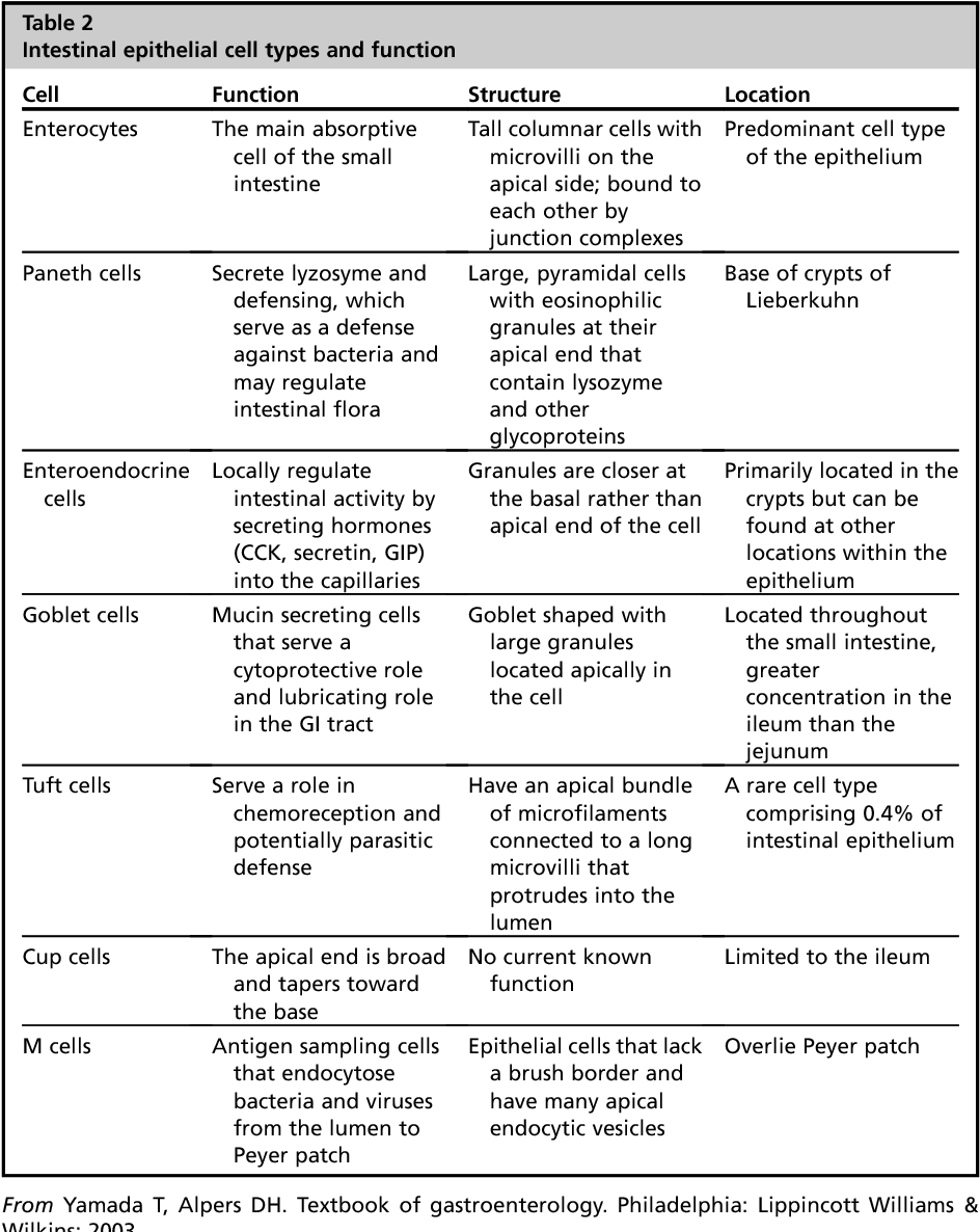 Anatomy and Physiology of the Small Bowel. - Semantic Scholar