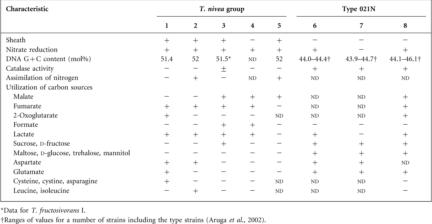 Table 2. Characteristics that differentiate strains BLT and G1T from other Thiothrix species