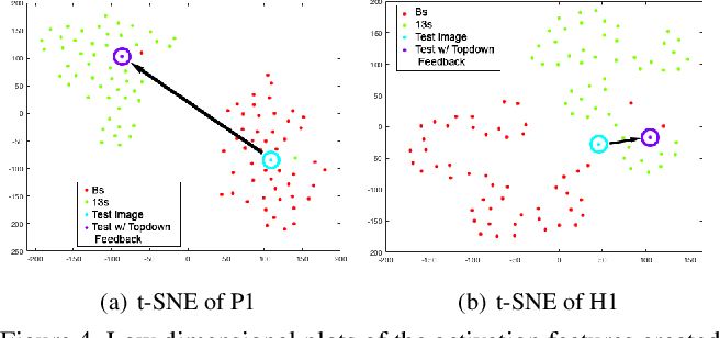 Figure 4 for Deep Sparse Coding for Invariant Multimodal Halle Berry Neurons