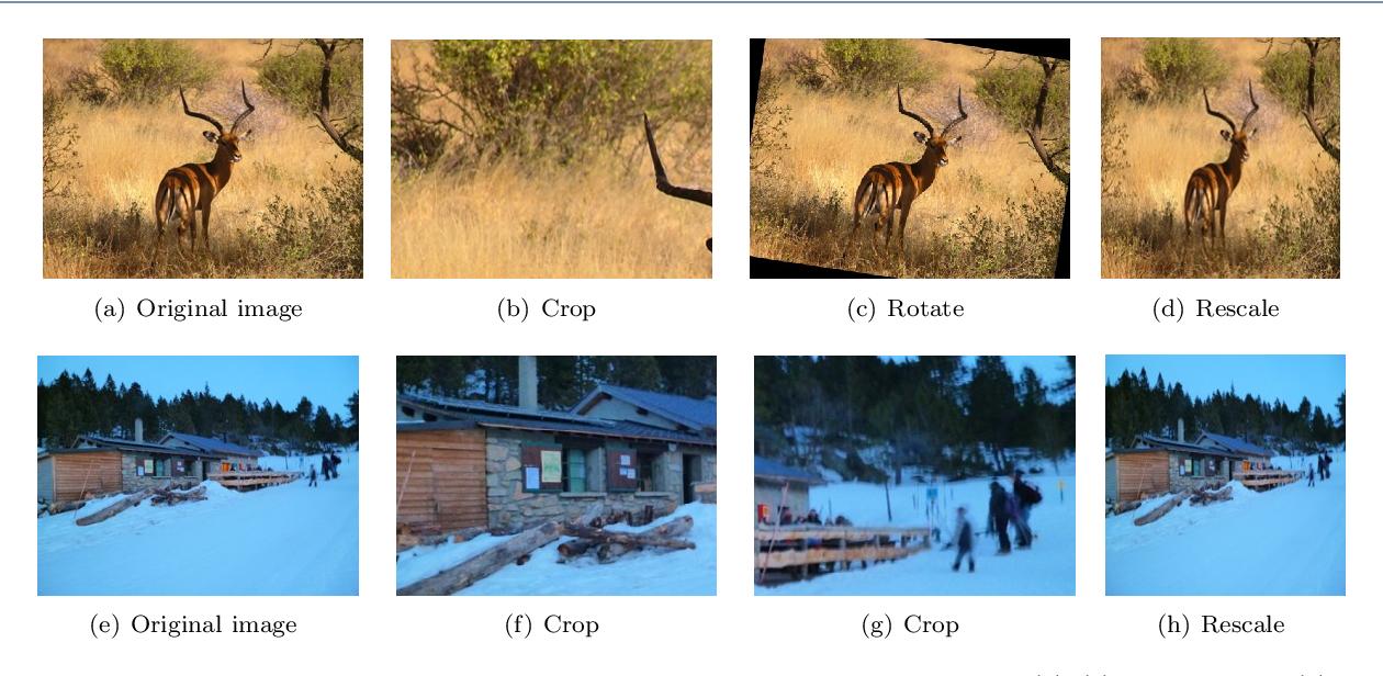 Figure 1 for Deep Superpixel-based Network for Blind Image Quality Assessment