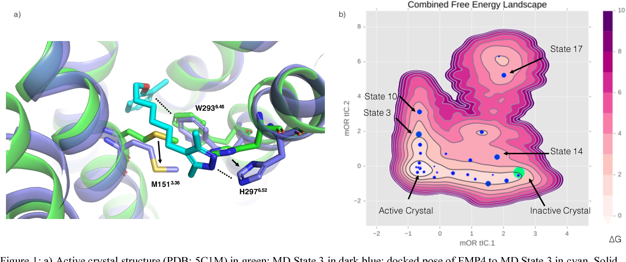 Figure 1 for Machine Learning Harnesses Molecular Dynamics to Discover New $μ$ Opioid Chemotypes