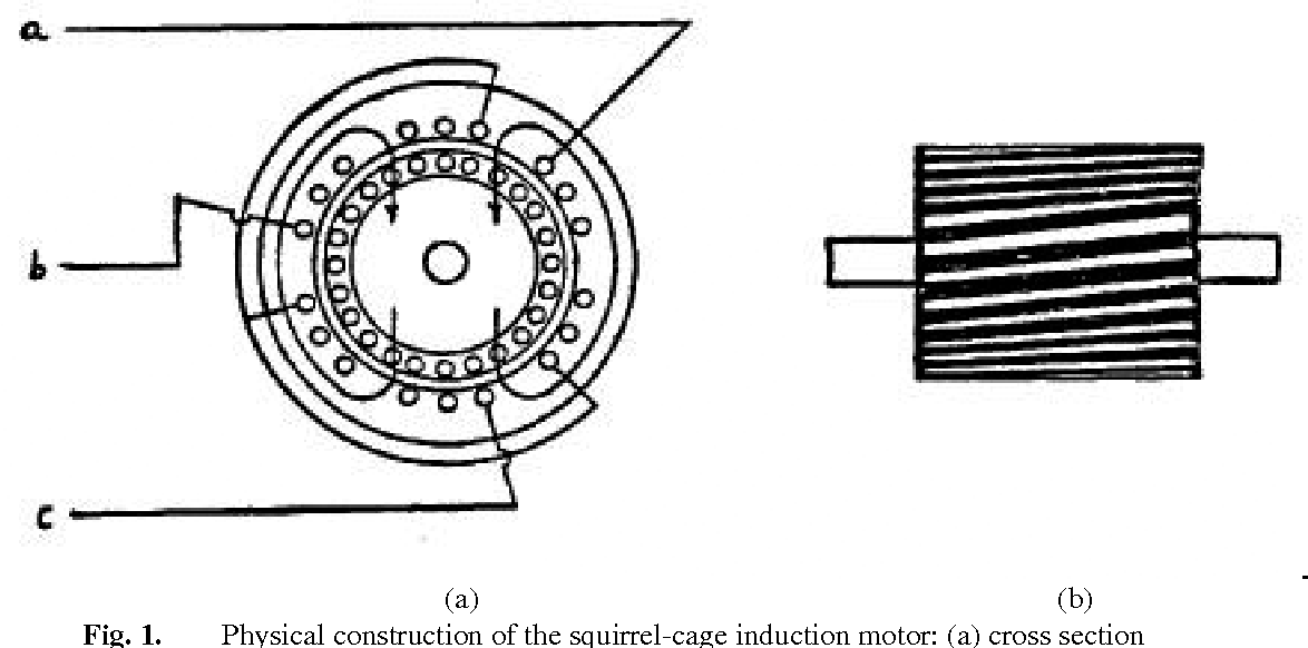 polyphase motor