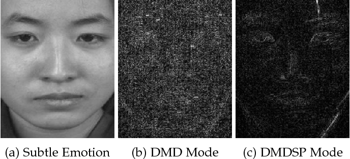 Figure 3 for Sparsity in Dynamics of Spontaneous Subtle Emotions: Analysis \& Application