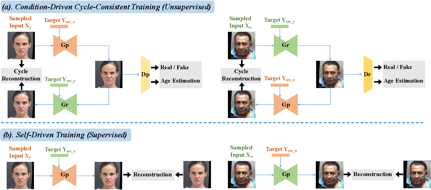 Figure 2 for A Unified Framework for Biphasic Facial Age Translation with Noisy-Semantic Guided Generative Adversarial Networks