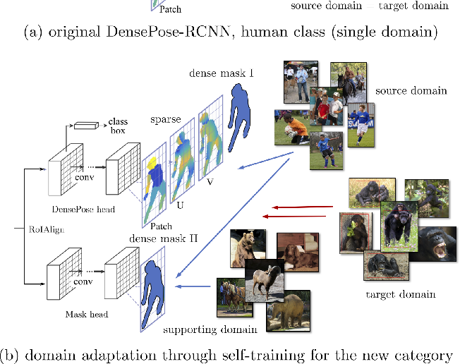 Figure 4 for Transferring Dense Pose to Proximal Animal Classes
